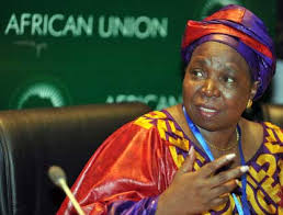 Dlamini Zuma-I am quite sure that by 2063 there should be free movement of people within our continent