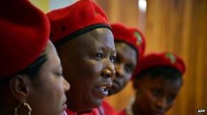 Julius Malema said he would fight global capitalism
