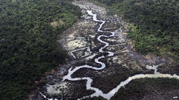 A creek in the Niger Delta devastated by oil spills - but Shell insists it is criminals and not oil companies who are the main culprits