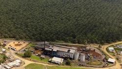 PALMCI plantation, operation and plant at Toumanguié, Côte d'Ivoire. (Photo: Camille Millerand/JA) -