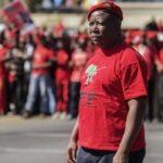 "Julius Malema says the ANC needs a ""wake-up call"""