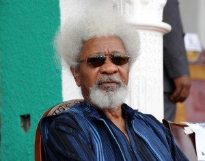 Nigerian Nobel Laureate Wole Soyinka in Enugu, southeastern Nigeria on March 1, 2012 (AFP Photo/Pius Utomi Ekpei)