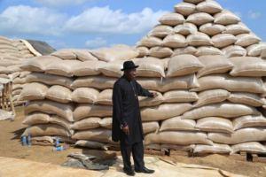 olam-rice-mill-nigeria-with-gej