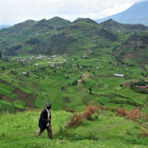 uganda-365x365