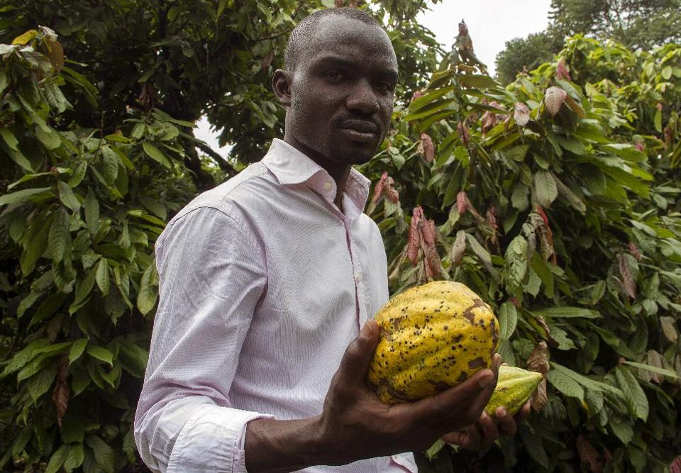 Stephen Sembuya, co-founder of the Pink Food Industries, holds two pods of cocoa at a in Wakiso on November 21, 2014 (AFP Photo/Isaac Kasamani)
