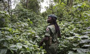 A female ranger in Virunga national park. Photograph: Monique Jacques