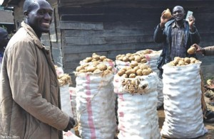 Dealers wait for a vehicle to transport Irish potatoes. A wholesale market for Irish potato will be set up in Kigali.