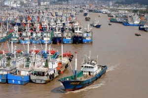 The number of Chinese-flagged or Chinese-owned fishing boats operating in Africa has soared in recent decades, from just 13 in 1985 to 462 in 2013, Greenpeace says (AFP Photo/)