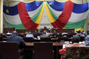 Central African Republic members of parliament meet to debate the new constitution on August 30, 2015 in Bangui (AFP Photo/Edouard Dropsy)