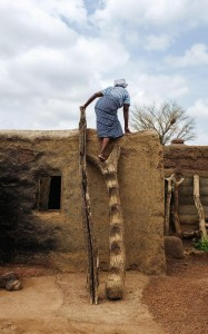 A woman gains access to her roof where shea nuts are stored CREDIT: NYANI QUARMYNE
