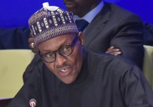 Nigeria's President Muhammadu Buhari was elected after he vowed to stamp out the Boko Haram insurgency by the end of December 2015 (AFP Photo/Mandel Ngan)