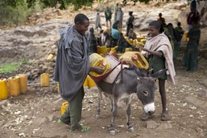 People load a donkey with cans of water in Ethiopia's northern Amhara region, February 13. Ethiopia's worst drought in 50 years has left 10 million people in need of food aid. KATY MIGIRO/REUTERS