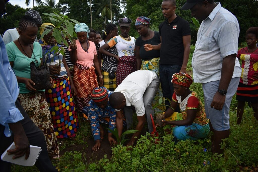Locals of Fogbo community planting a tree seedling whilst the EPA officer and the Head man looks on