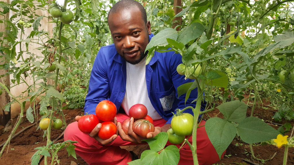 Roland Foumundam, CEO GreenHouse Ventures Ltd, Cameroon has been using greenhouse technology to increase food production