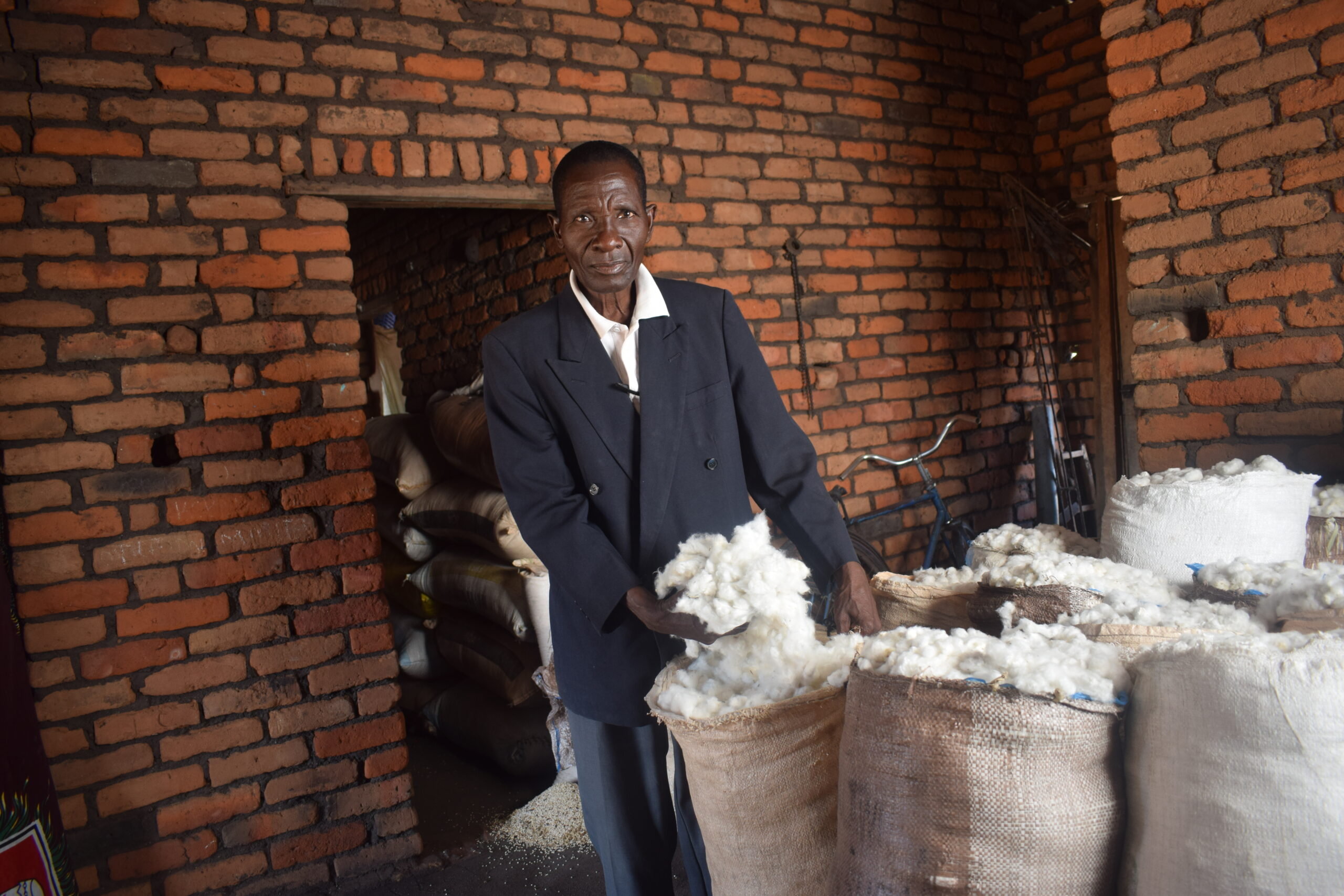 A cotton farmer from Malawi shows off his bumper harvest from Bt cotton - Photo by Suzgo Chitete