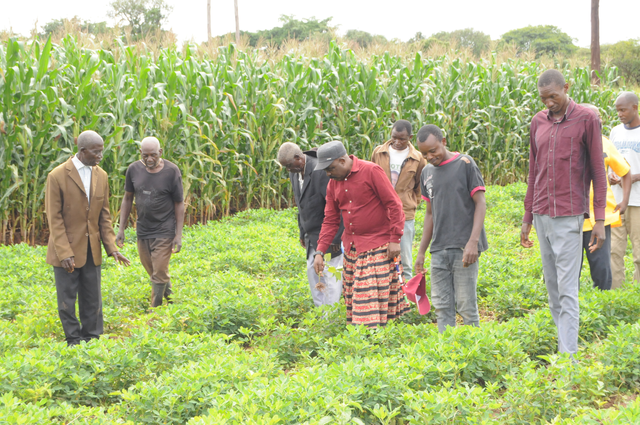 FQM has provided training and technical support to close to 40,000 farmers and early agricultural input delivery to 7,000 farmers.