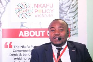 Ulrich D'POLA KAMDEM, Senior Economist at the Nkafu Policy Institute and Coordinator of the Nkafu Policy Institute
