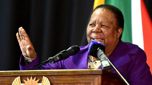 South African Foreign Minister Naledi Pandor