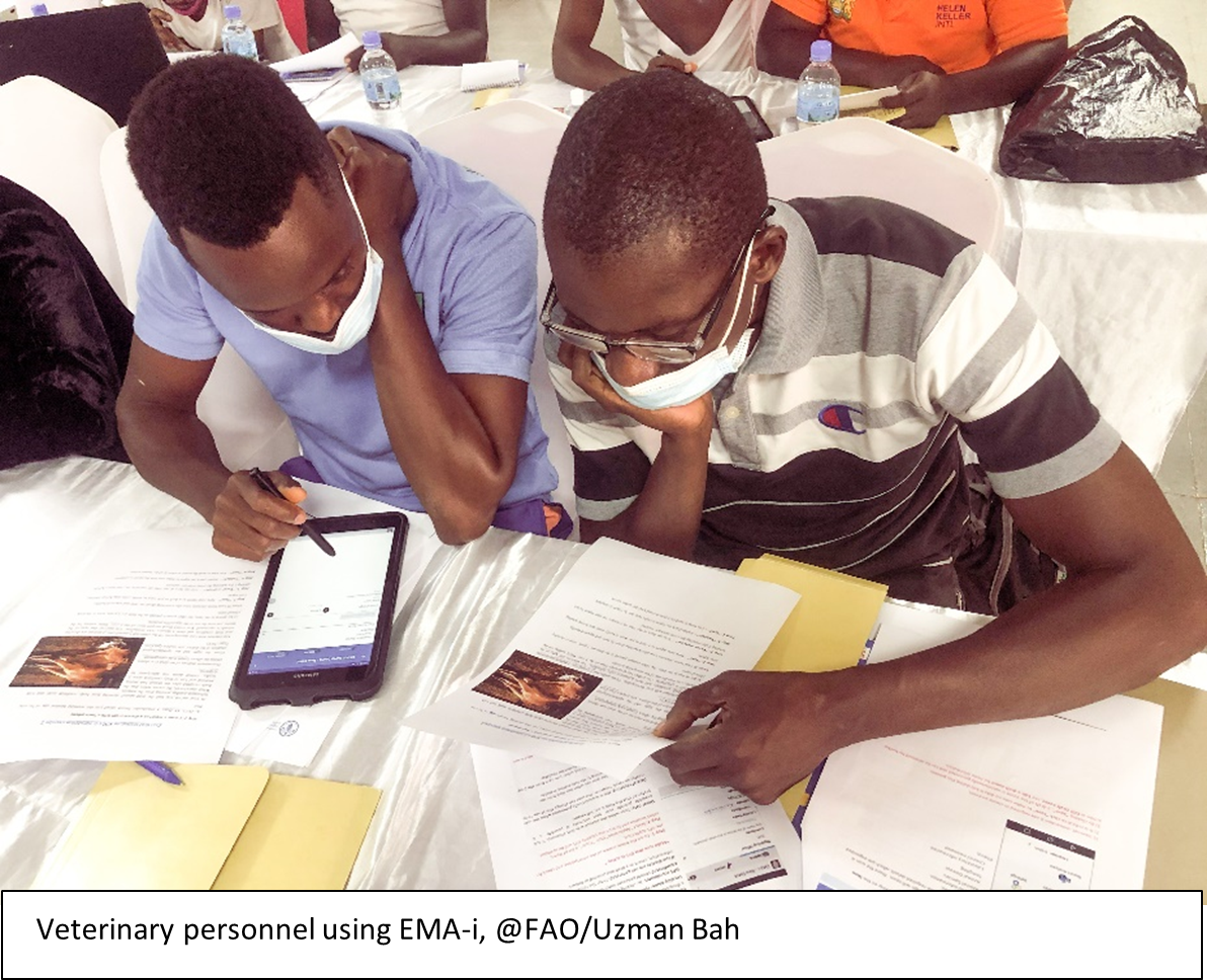 Veterinary personnel using EMA-i, @FAO/Uzman Bah