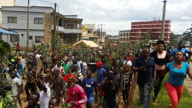 File picture.Protesters marching with peace plants in the English speaking North West Region of Cameroon. The callous response from the government resulted in a full blown conflict with disastrous consequences.